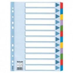 ESSELTE Jeu d' Intercalaire crte 160g blanches 12 touches A4 neutres colorées Mylar