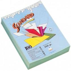 RAINEX Paquet de 100...