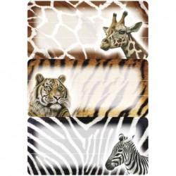 """HERMA Étiquettes pour livres """"animaux africains"""" 76 x 35 mm 3 x 3 Etiquettes"""