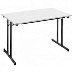 SODEMATUB Table Pliante Rectangulaire 120 x 60 cm Gris - Noir