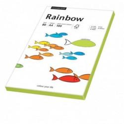 PAPYRUS Pqt 100 Feuilles Papier multifonction Rainbow A4 80 g Néon Vert