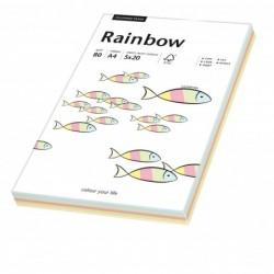 PAPYRUS Ramette de 100 feuilles papier multifonction Rainbow A4 80 g mixte color