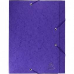 EXACOMPTA Boîte à élastiques CARTOBOX Nature Future Carte Lustrée Dos 40 mm Violet