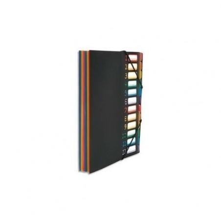 VIQUEL Trieur vertical RAINBOW 12 compartiments à soufflet en polypro 5/10, noir