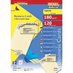 DECADRY Pochette 120 cartes de visitechampagne TopLine - 180g 85 x 54 mm