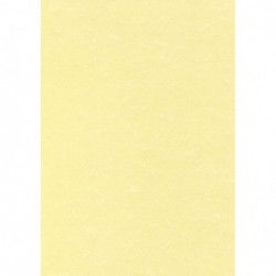 DECADRY Papier de communication Structuré A3 165g 25 feuilles Parchemin Champagne