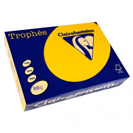 TROPHÉE Ramette 500 Feuilles Papier 80g A4 210x297 mm Certifié FSC  tournesol