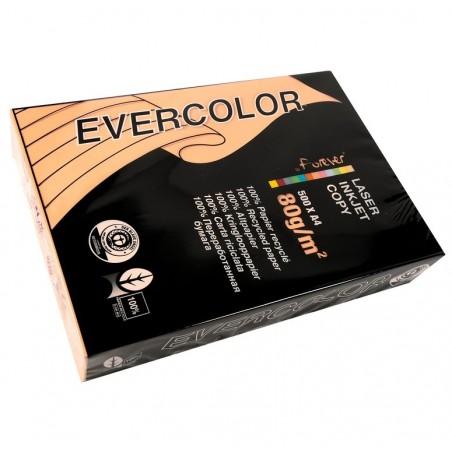 EVERCOLOR Ramette 500 Feuilles Papier 80g A4 210x297 mm Certifié Ange Bleu  saumon