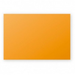 POLLEN Pqt de 25 Carte Simple 210g 110x155 capucine