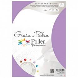 POLLEN Etui de 5 enveloppes Grain de Pollen 162x229 violette
