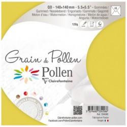 POLLEN Etui de 5 enveloppes Grain de Pollen 140x140 melon d'eau