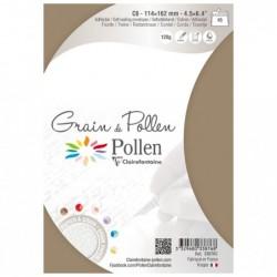 POLLEN Etui de 5 enveloppes Grain de Pollen 114x162 ficelle