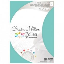 POLLEN Etui 5 Feuilles Grain de Pollen 210x297 vert d'eau 120g