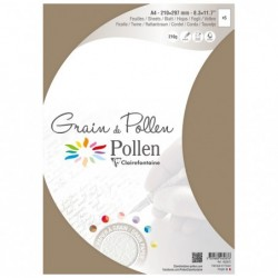 POLLEN Etui 5 Feuilles Grain de Pollen 210x297 ficelle 210g