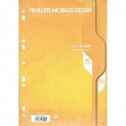 CALLIGRAPHE Feuillets mobiles dessin 21x29,7cm 80p uni 120g