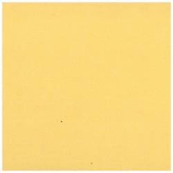 CLAIREFONTAINE Lot 25F Ingres-Pastel 130g 50x65cm écru