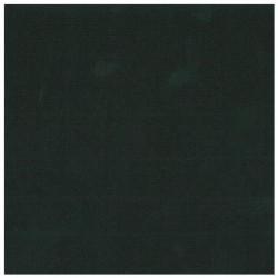 CLAIREFONTAINE Lot 25F Ingres-Pastel 130g 50x65cm noir