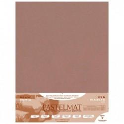 CLAIREFONTAINE Paquet de 5 F Pastelmat 360g 50x70 Brun