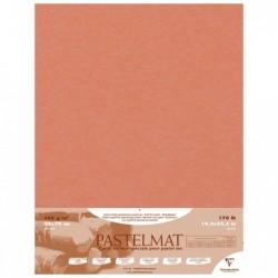 CLAIREFONTAINE Paquet de 5F Pastelmat 360g 50x70 Terre de Sienne