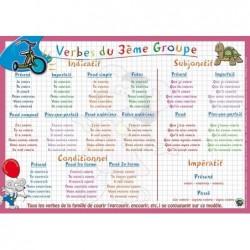 """ARIS EDITIONS Sous-main et Set de table éducatif 30x42 Plastifié, effaçable """"verbes 3ème groupe"""""""