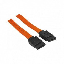 DEXLAN Câble serial ATA 0,20m
