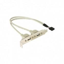 DELOCK Adaptateur slot USB 2.0 2 ports A