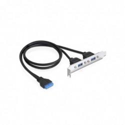 DELOCK Adaptateur slot USB 3.0 2 ports A