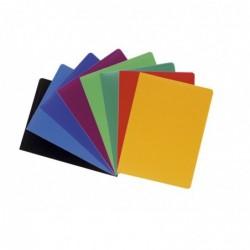 EXACOMPTA Protège-documents A4 60 pochettes 120 Vues Coloris aléatoires