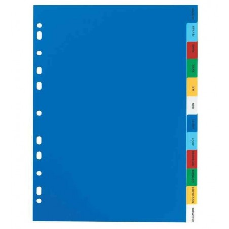 ELBA Jeu d'intercalaires A4 en polypropylène mensuel coloré 12 touches