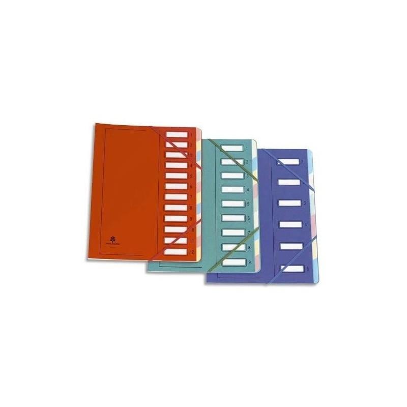 EXTENDOS Trieur en carte forte vernie + élastique 9 compartiments bleu