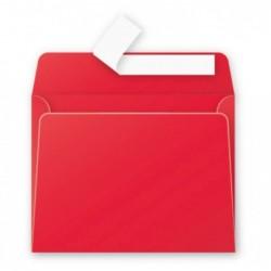 POLLEN Pqt de 20 Enveloppe...