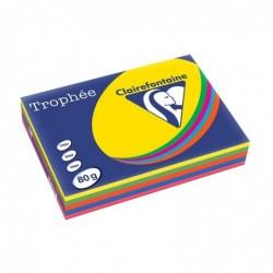 TROPHÉE Ramette 500 Feuilles Papier 80g A4 210x297 mm Certifié FSC  Assorti Intense