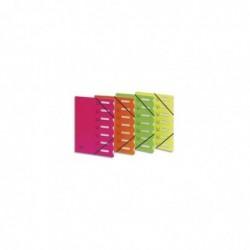 EXTENDOS Trieur à élastiques en polypropylène 7 compartiments Coloris Aléatoire Fluo