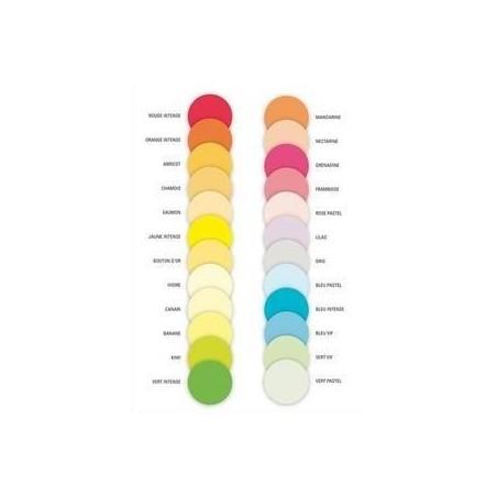 PAPETERIES DE FRANCE Ramette 125 feuilx4 coloris papier couleur copieur, A4 assortis fluo