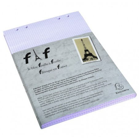 EXACOMPTA Boîte de 5 recharges FAF N°6, format 29,7x21cm réglure 5x5