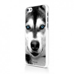 MOXIE Coque Blue Eyes Collection Husky  pour iPhone 5C