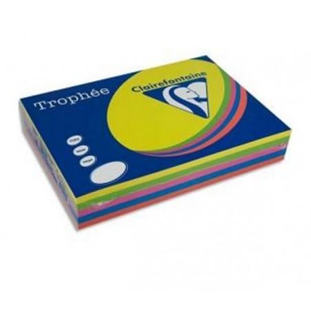 TROPHÉE Ramette 500 Feuilles Papier 80g A3 420x297 mm Certifié FSC  Assorti Fluo