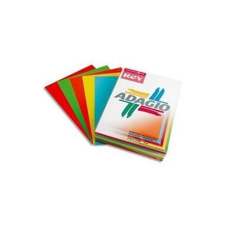 PAPETERIES DE FRANCE PAPYRUS Ramette 50 feuilles x 5 teintes ADAGIO 80g format A3 assortis intenses