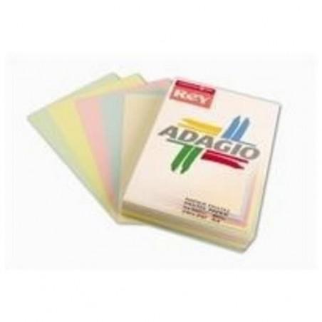 PAPETERIES DE FRANCE Ramette 100 feuilles x 5 teintes ADAGIO 80g format A4 assortis pastel et vif