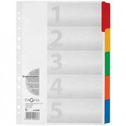 PAGNA Intercalaire Carton A4 5 onglets Couleur Renforcés