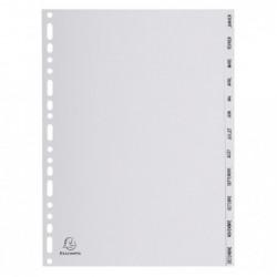 EXACOMPTA Intercalaires PP gris A4 12p Mois