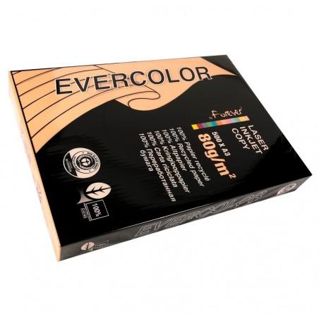 EVERCOLOR Ramette 500 Feuilles Papier 80g A3 420x297 mm Certifié Ange Bleu  saumon