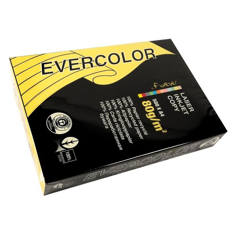 EVERCOLOR Ramette 500 Feuilles Papier 80g A4 210x297 mm Certifié Ange Bleu   Citron