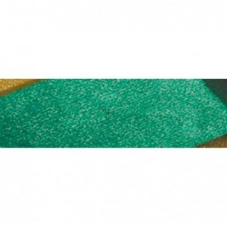CLAIREFONTAINE Rouleau de métalcrêpe 2,50x0,50m vert empire