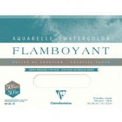 CLAIREFONTAINE Flamboyant lot 10F 75x105cm 300g