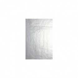 CLAIREFONTAINE Sachet de papier de soie 4F pliées 0,75x0,50m argent