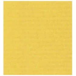 CLAIREFONTAINE Rouleau papier kraft 3x0.70m jaune citron