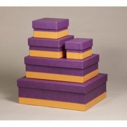 RHODIA Set 5 boîtes gigognes Violet 44x34x16cm
