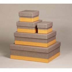RHODIA Set 5 boîtes gigognes Taupe 44x34x16cm