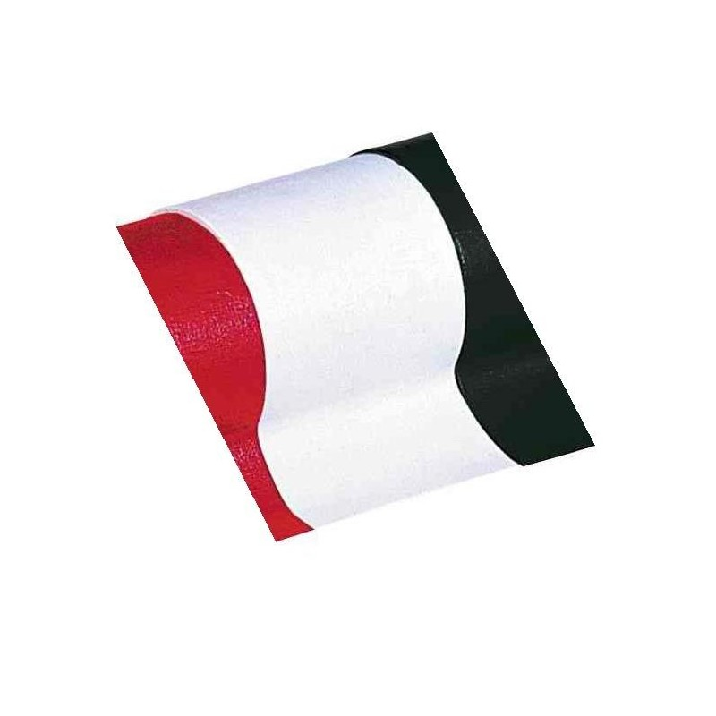 RUBAFIX Ruban toile 1000 Plastifié 38mm x 3 m Blanc